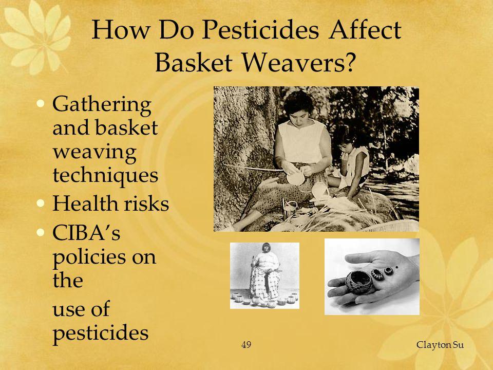 49Clayton Su How Do Pesticides Affect Basket Weavers.