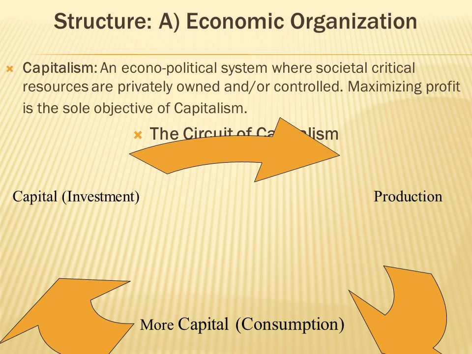 Structure: The Political Economy  The Principles of Capitalism 1) The necessity of Perpetual growth (Economic Growth) 2) The creation of need 3) The creation of dissatisfaction 4) The necessity of unemployment (The creation of a reserve labor source) 5) The necessity of externalizing cost (socializing risk and privatizing profit) 6) The quantification of human and natural resources into measurable economic units 7) The necessity of aggression, competition, and the survival of the mightiest 8) Amorality 9) The necessity of Standardization (harmonization) 10) The valuing of scarcity