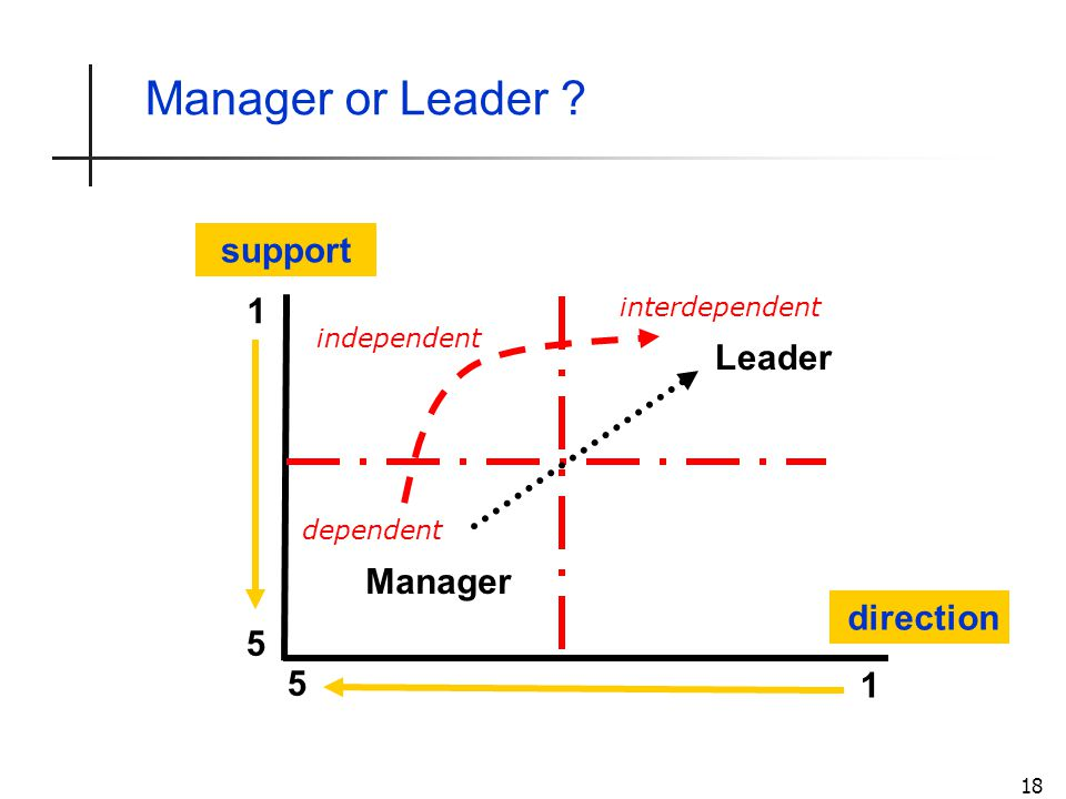 18 Manager or Leader ? direction support 5 5 1 1 Leader Manager interdependent independent dependent