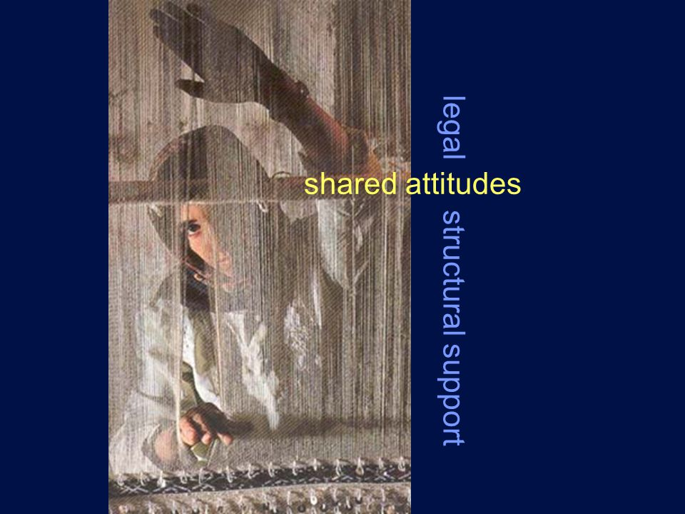 shared attitudes legal structural support