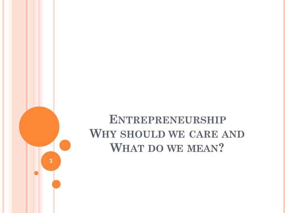 E NTREPRENEURSHIP W HY SHOULD WE CARE AND W HAT DO WE MEAN 3