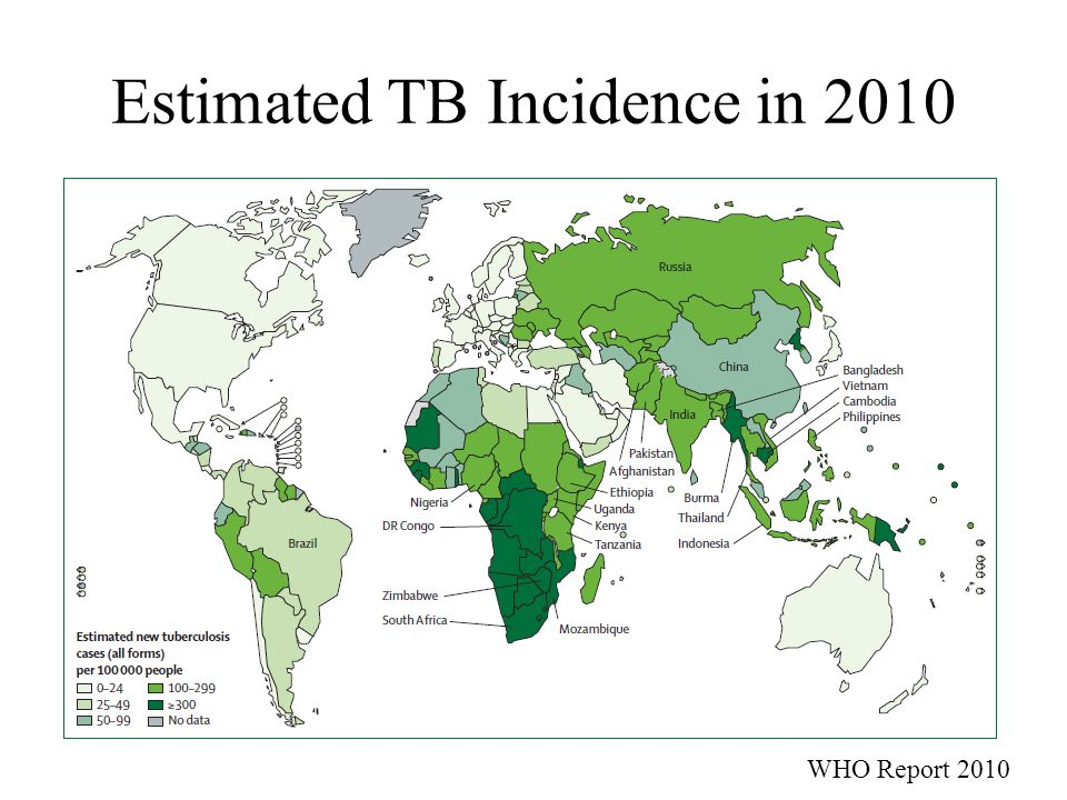 Necessity of New TB Vaccines Nearly 9 million new cases and 1.7 million deaths per year Vaccine that prevent pulmonary TB in all age groups is in need to significantly reduce disease incidence in the future (Ideal) vaccine that can prevent or terminate infection is a long-term goal