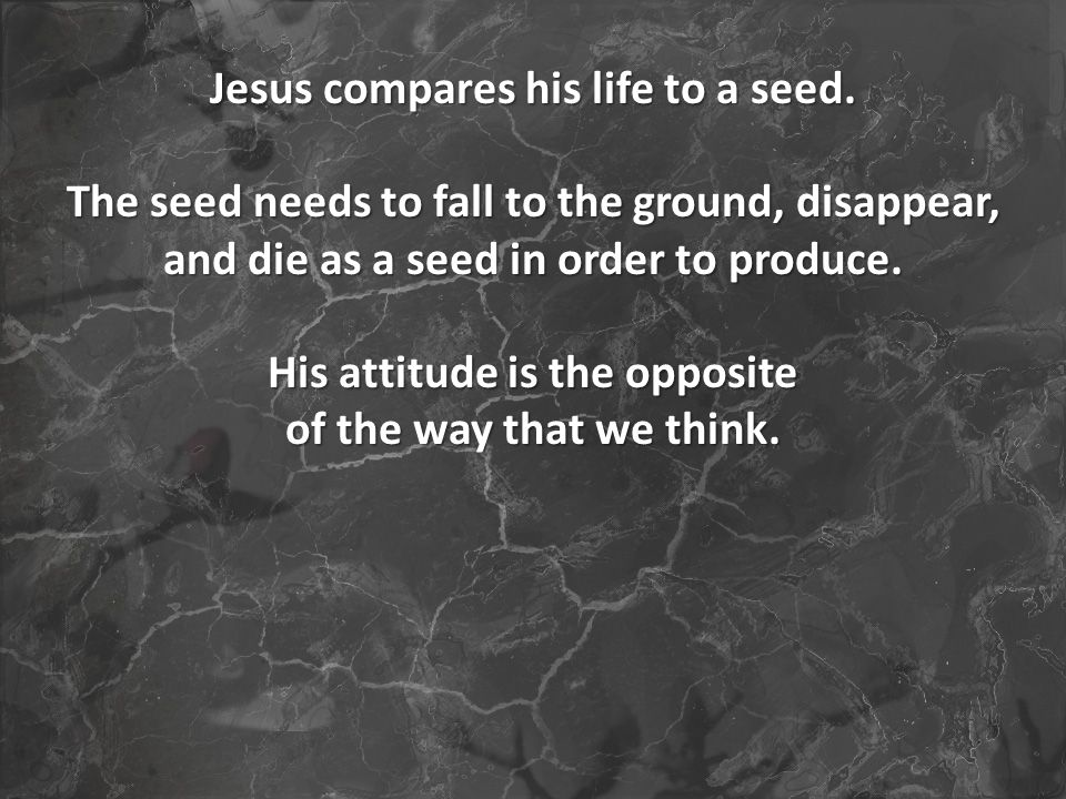 Jesus compares his life to a seed.