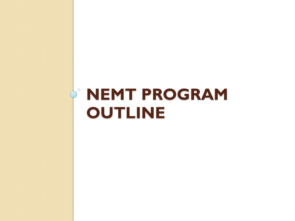 What are you responsible for as an NEMT Representative.