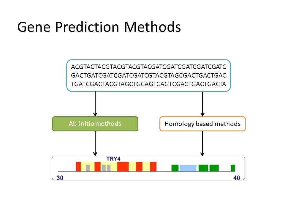 Gene Prediction Methods ACGTACTACGTACGTACGTACGATCGATCGATCGATCGATC GACTGATCGATCGATCGATCGTACGTAGCGACTGACTGAC TGATCGACTACGTAGCTGCAGTCAGTCGACTGACTGACTA Ab-initio methodsHomology based methods Ab-initio methods