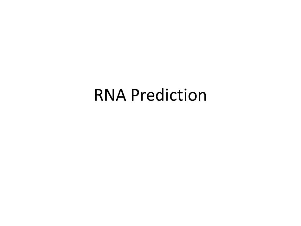 RNA Prediction