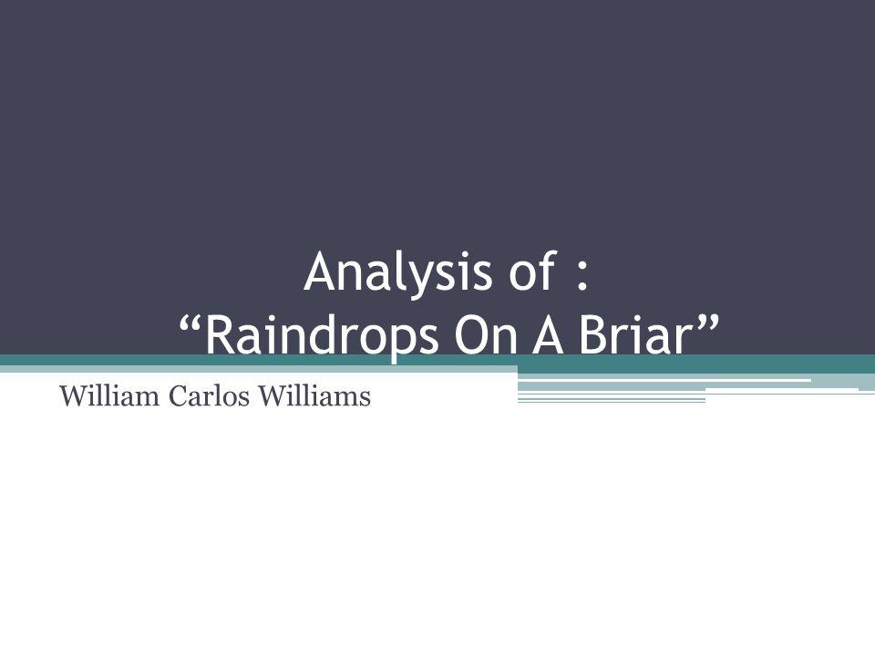 "Analysis of : ""Raindrops On A Briar"" William Carlos Williams"