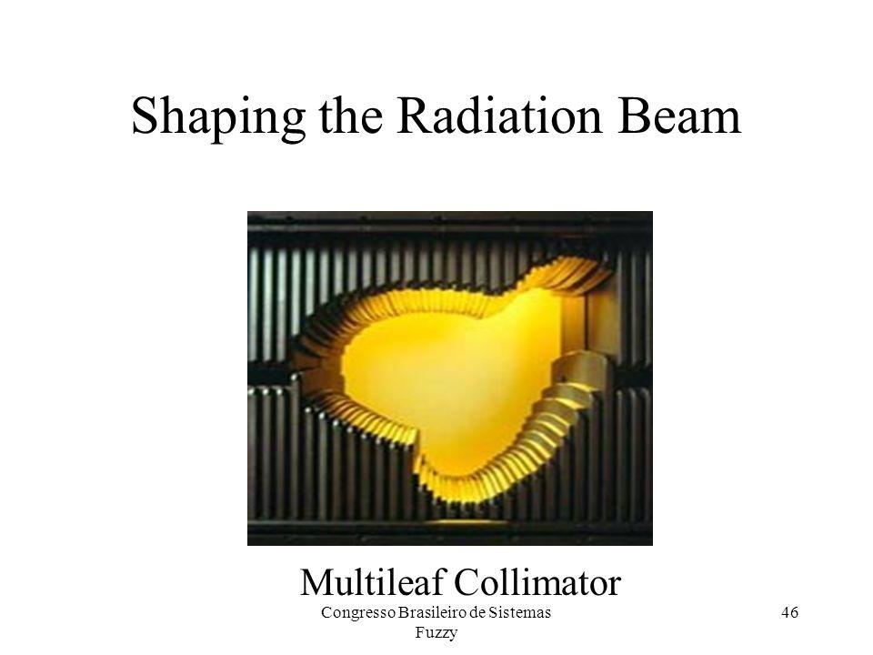 46 Shaping the Radiation Beam Multileaf Collimator Congresso Brasileiro de Sistemas Fuzzy