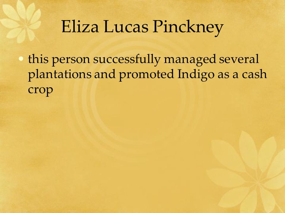 Eliza Lucas Pinckney this person successfully managed several plantations and promoted Indigo as a cash crop