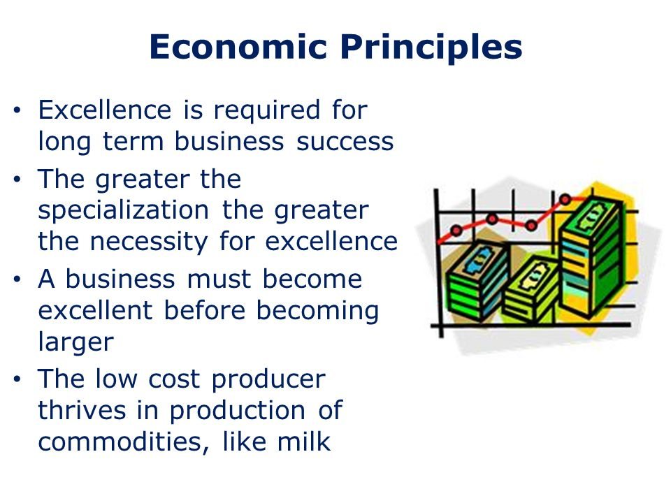 Economic Principles Excellence is required for long term business success The greater the specialization the greater the necessity for excellence A bu