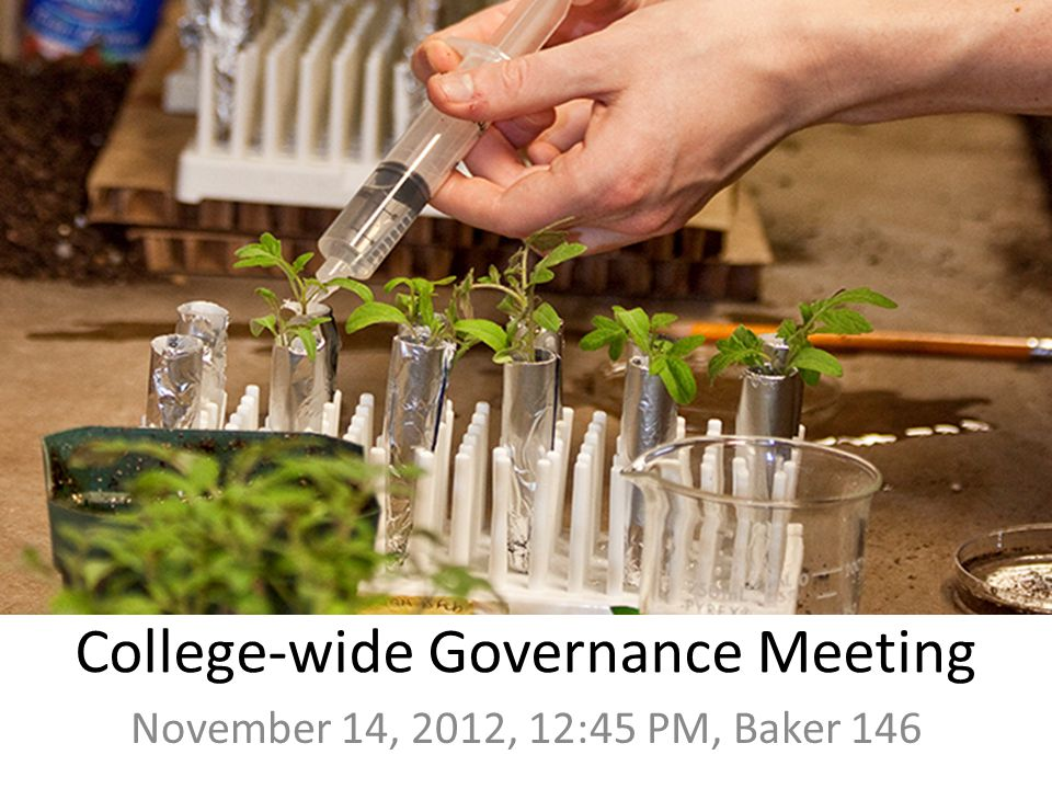 College-wide Governance Meeting November 14, 2012, 12:45 PM, Baker 146