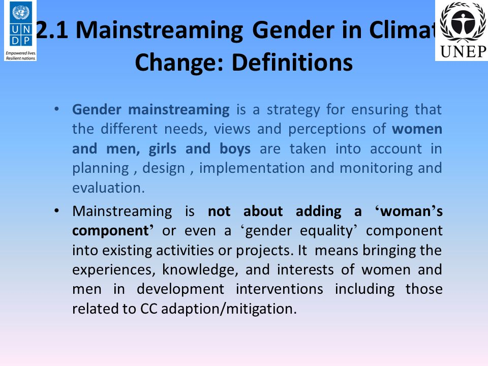 2.2 Mainstreaming Gender: Systematic gender analysis Design and Project implementation – Goals/objectives refer to gender issues – Participation/engagement – Training/awareness raising – Budgeting and financing Monitoring and evaluation – Does project affect activity profile .