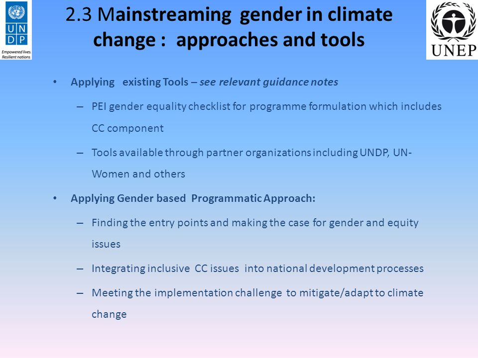 Finding entry points and making the case for Gender and equity issues – Preliminary Assessment understanding governmental, political and institutional needs to promote gender equality and specific gender-sensitive Climate response gender analysis of relevant (sub)-national and sector strategies, plans, budgets and aid programmes –in line with existing gender equality strategies.- Impact analysis of socio economic aspects of climate change- loss in GDP, land degradation, who is more affected.
