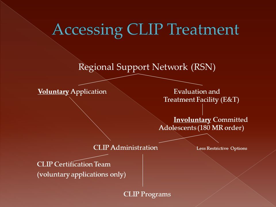  Voluntary Application is a two tiered process: › A comprehensive application must be submitted to RSN CLIP Coordinator.