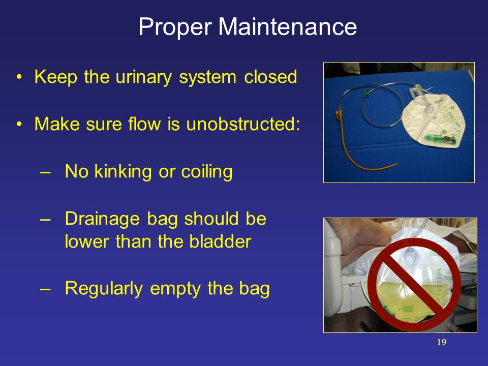 Proper Maintenance Keep the urinary system closed Make sure flow is unobstructed: –No kinking or coiling –Drainage bag should be lower than the bladde