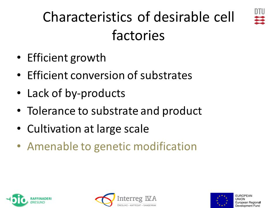 Characteristics of desirable cell factories Efficient growth Efficient conversion of substrates Lack of by-products Tolerance to substrate and product Cultivation at large scale Amenable to genetic modification
