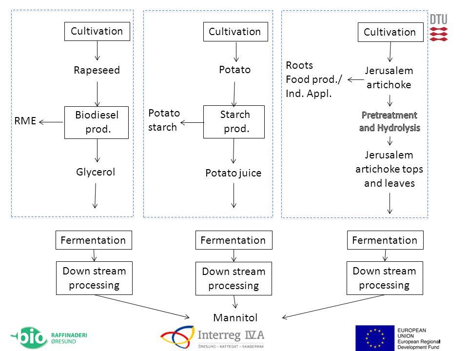 Mannitol Biodiesel prod. RME Glycerol Potato juice Rapeseed Starch prod.