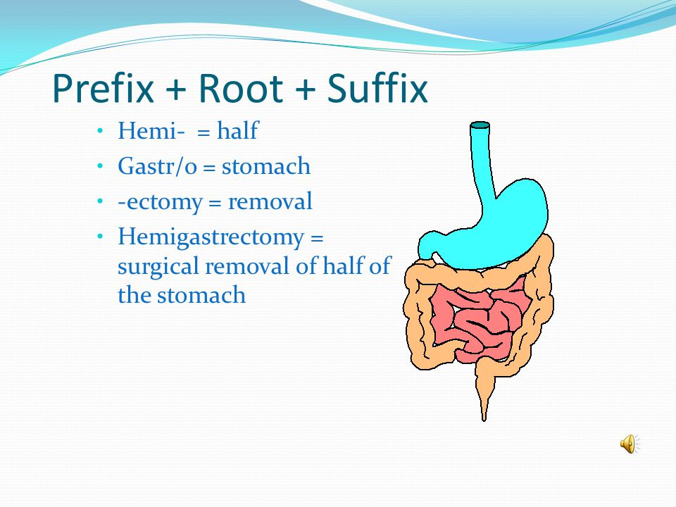 "Root + Suffix Gastr/o = stomach -ectomy = removal Gastrectomy = removal of the stomach (Did you notice that the combining ""o"" got dropped? That's beca"