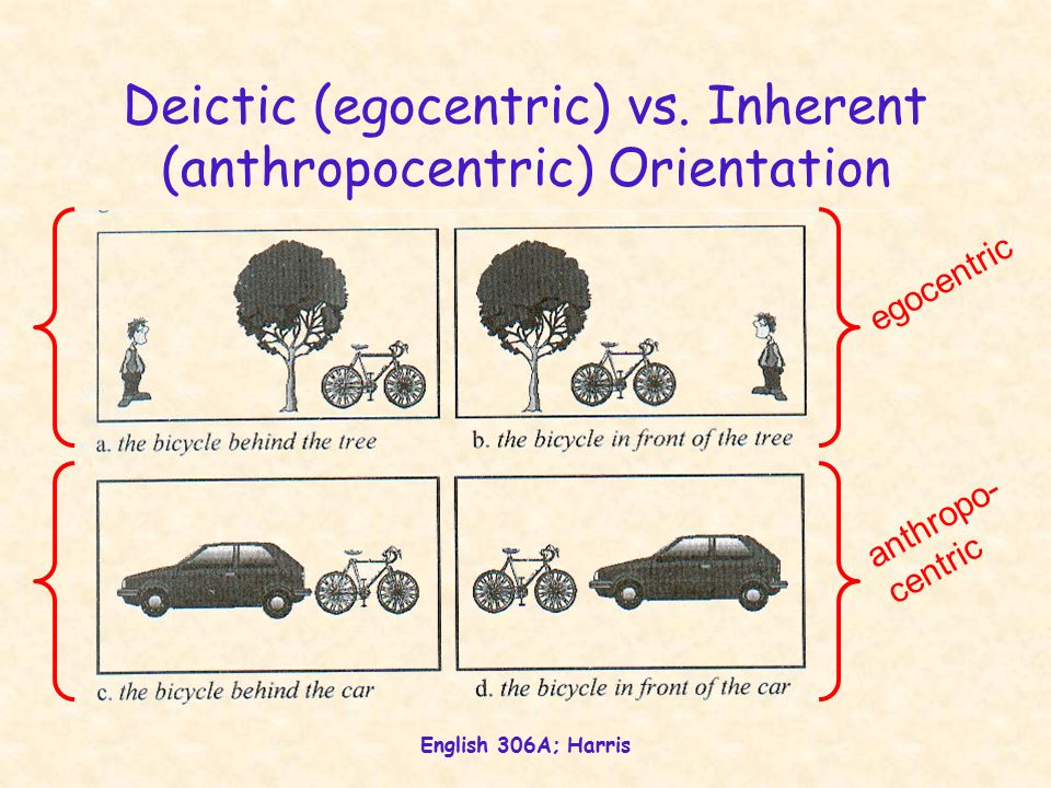 English 306A; Harris Indexicality Anthropocentricity Gk.
