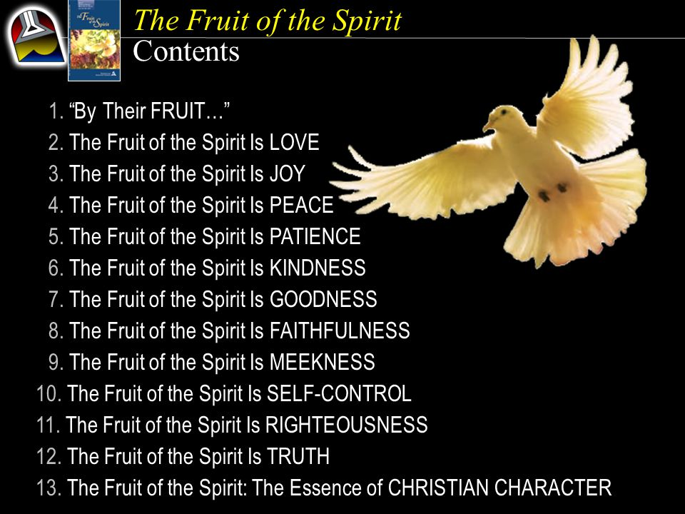 The Fruit of the Spirit Our Goal {5} The purpose of this quarter's lessons is not to focus on how we can become more patient or more loving or more gentle or more faithful but on how we can let the Holy Spirit make us more like Jesus, who is patience, love, gentleness, and faithfulness personified.