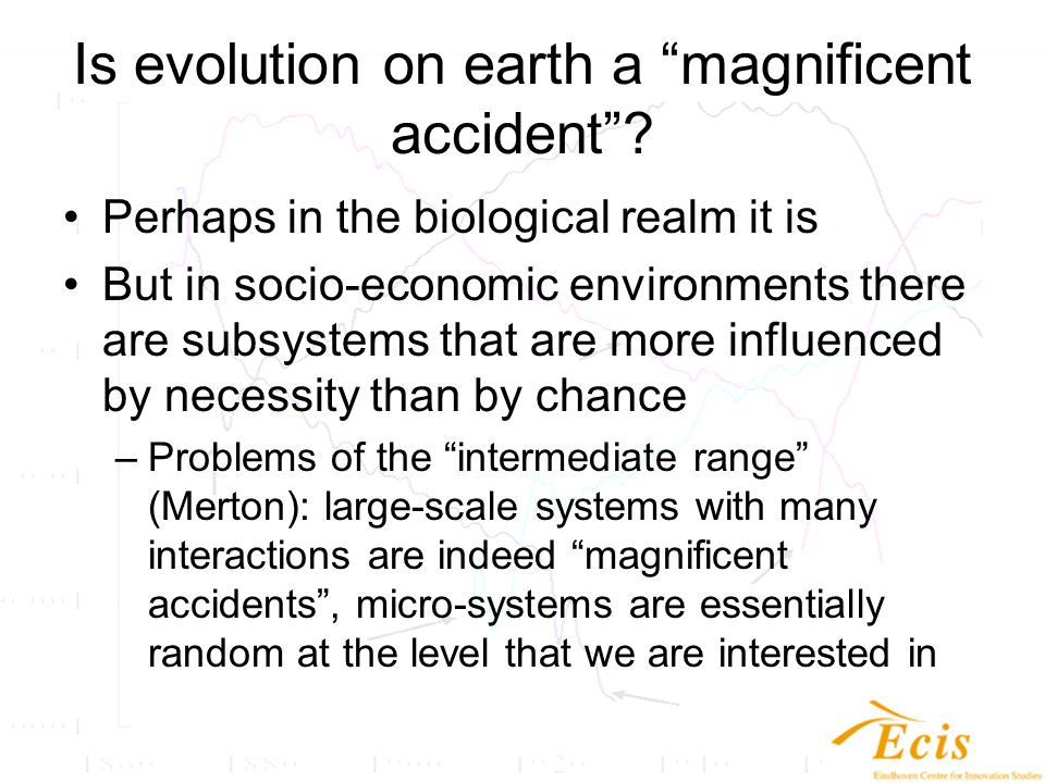 Is evolution on earth a magnificent accident .