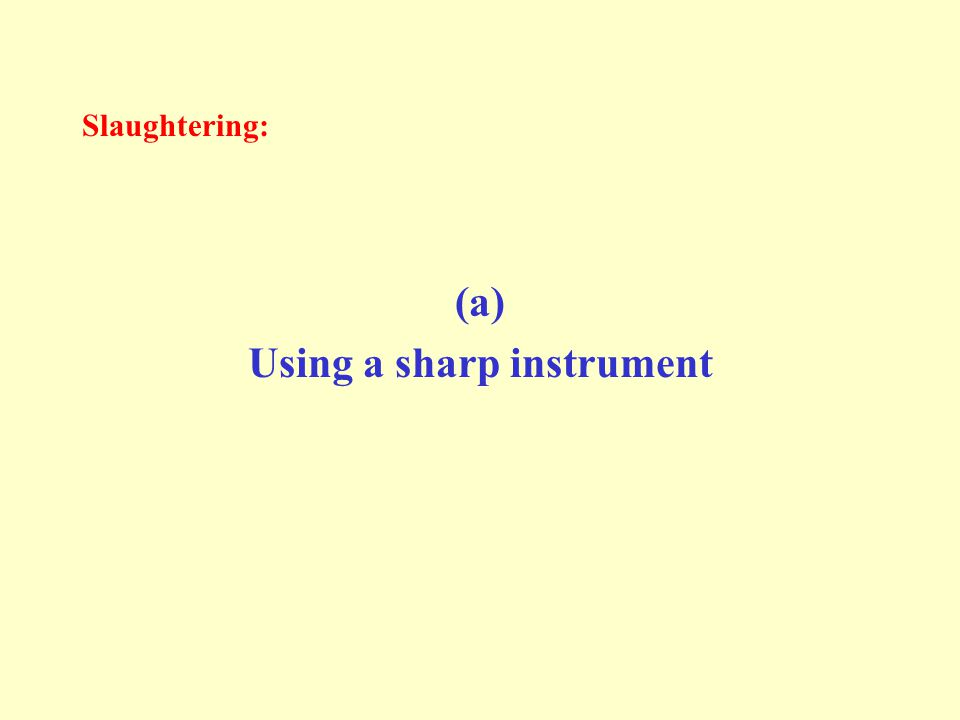 Slaughtering: (a) Using a sharp instrument