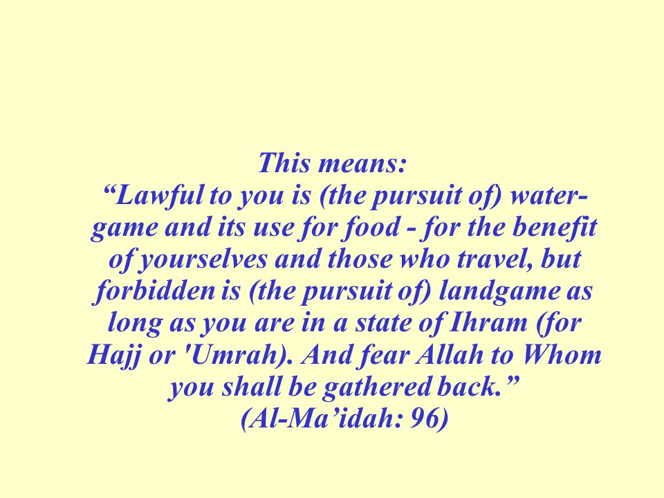 This means: Lawful to you is (the pursuit of) water­ game and its use for food - for the benefit of yourselves and those who travel, but forbidden is (the pursuit of) land­game as long as you are in a state of Ihram (for Hajj or Umrah).