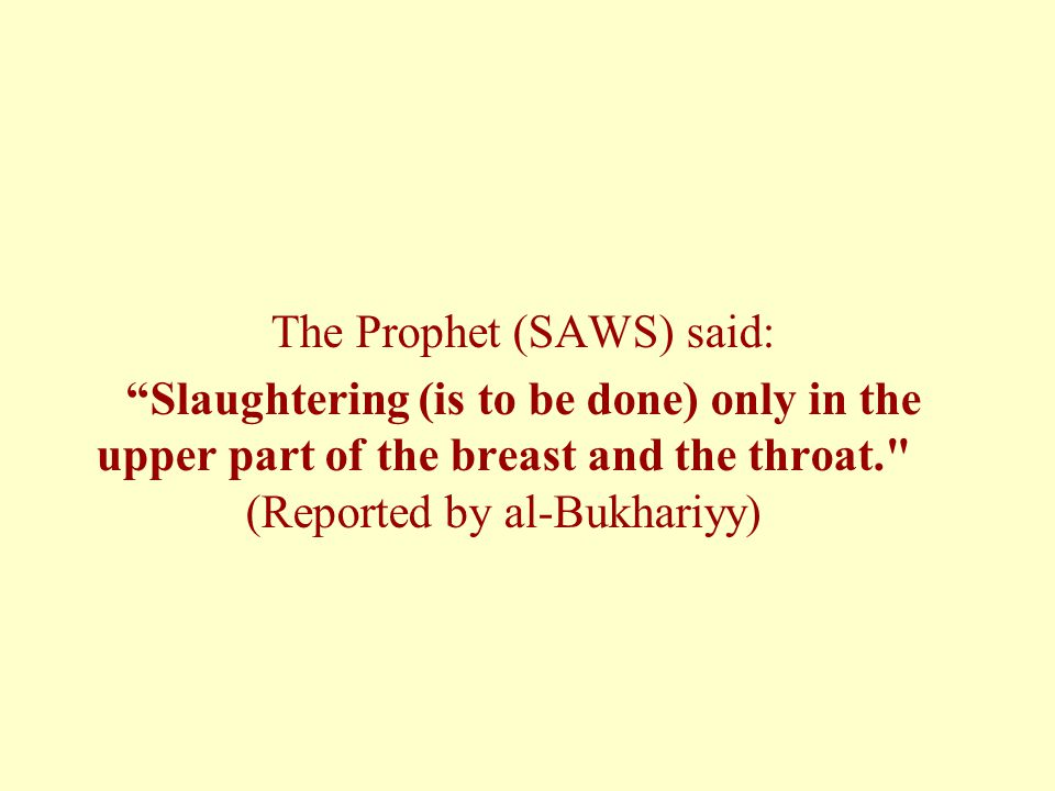 The Prophet (SAWS) said: Slaughtering (is to be done) only in the upper part of the breast and the throat. (Reported by al-Bukhariyy)