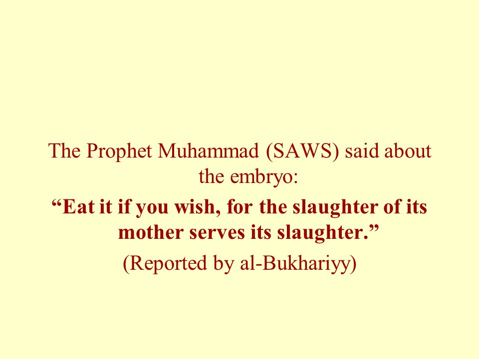 The Prophet Muhammad (SAWS) said about the embryo: Eat it if you wish, for the slaughter of its mother serves its slaughter. (Reported by al-Bukhariyy)