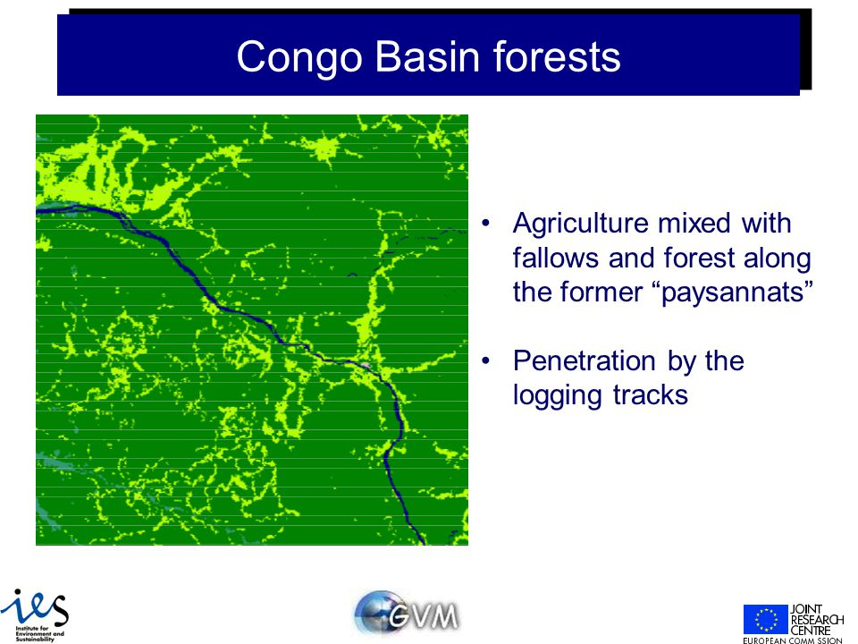 Congo Basin forests Agriculture mixed with fallows and forest along the former paysannats Penetration by the logging tracks