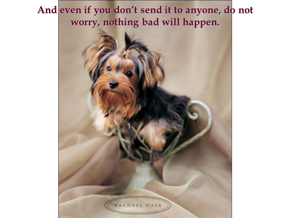 And even if you don't send it to anyone, do not worry, nothing bad will happen.