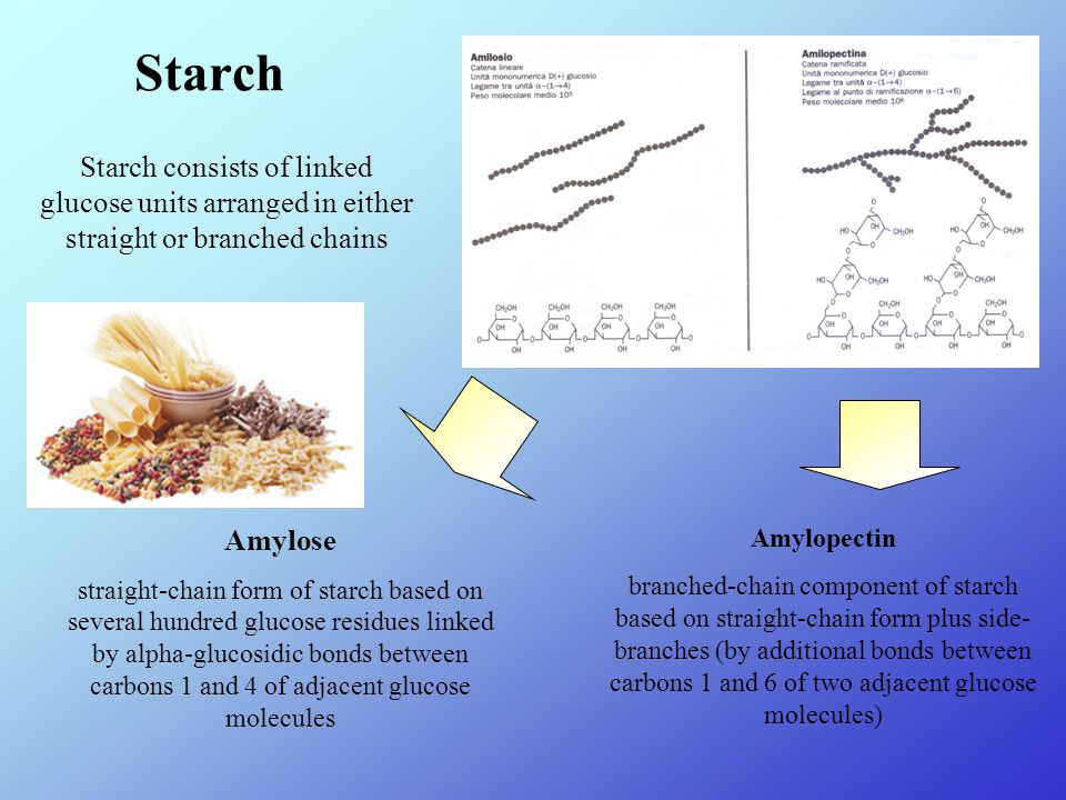 Starch Starch consists of linked glucose units arranged in either straight or branched chains Amylose straight-chain form of starch based on several hundred glucose residues linked by alpha-glucosidic bonds between carbons 1 and 4 of adjacent glucose molecules Amylopectin branched-chain component of starch based on straight-chain form plus side- branches (by additional bonds between carbons 1 and 6 of two adjacent glucose molecules)