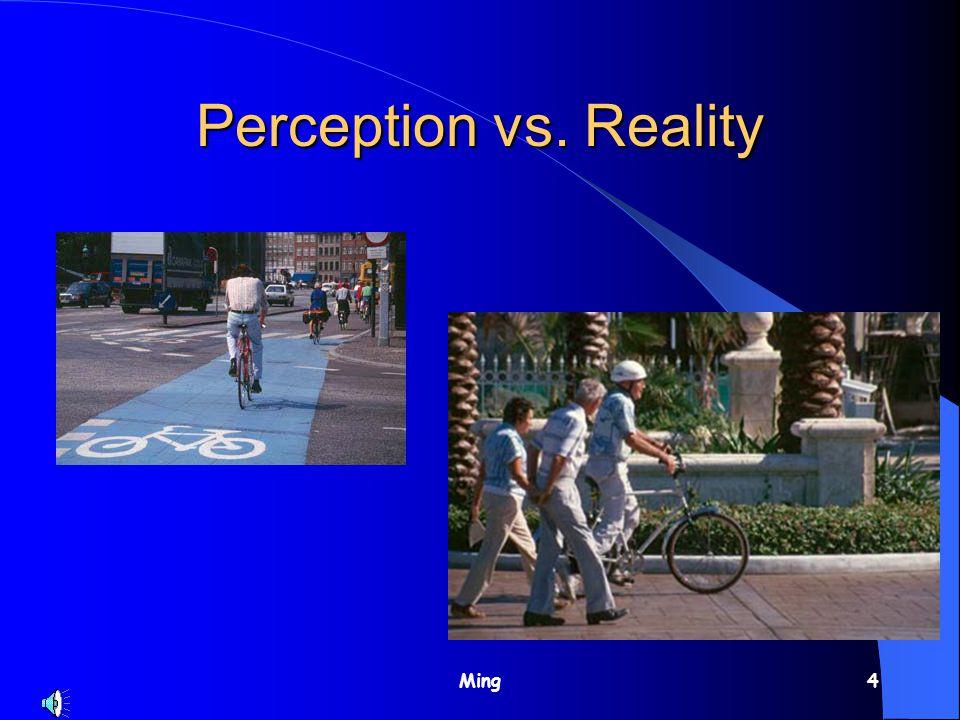 Ming4 Perception vs. Reality