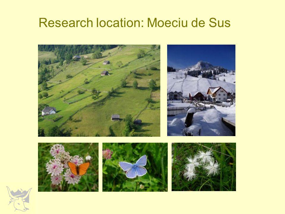 Research location: Moeciu de Sus