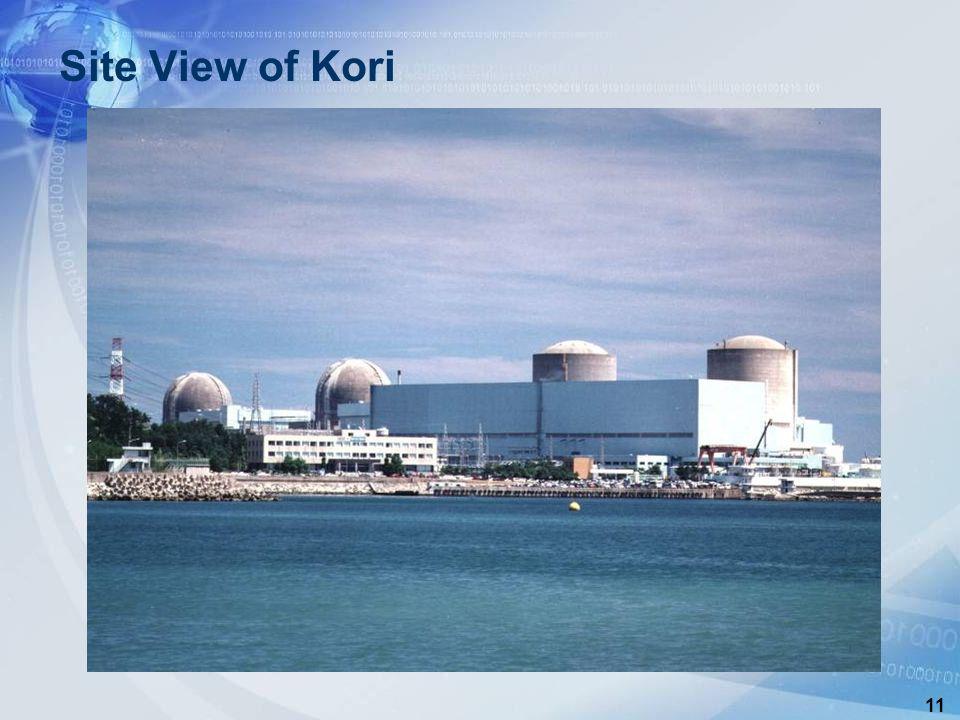 11 Site View of Kori