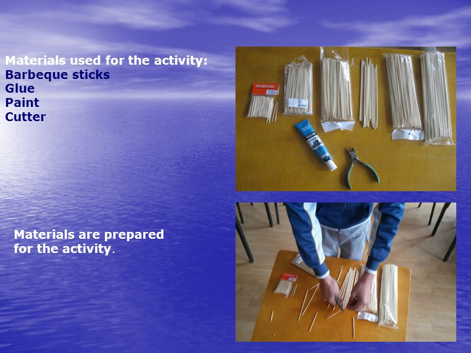 Materials used for the activity: Barbeque sticks Glue Paint Cutter Materials are prepared for the activity.