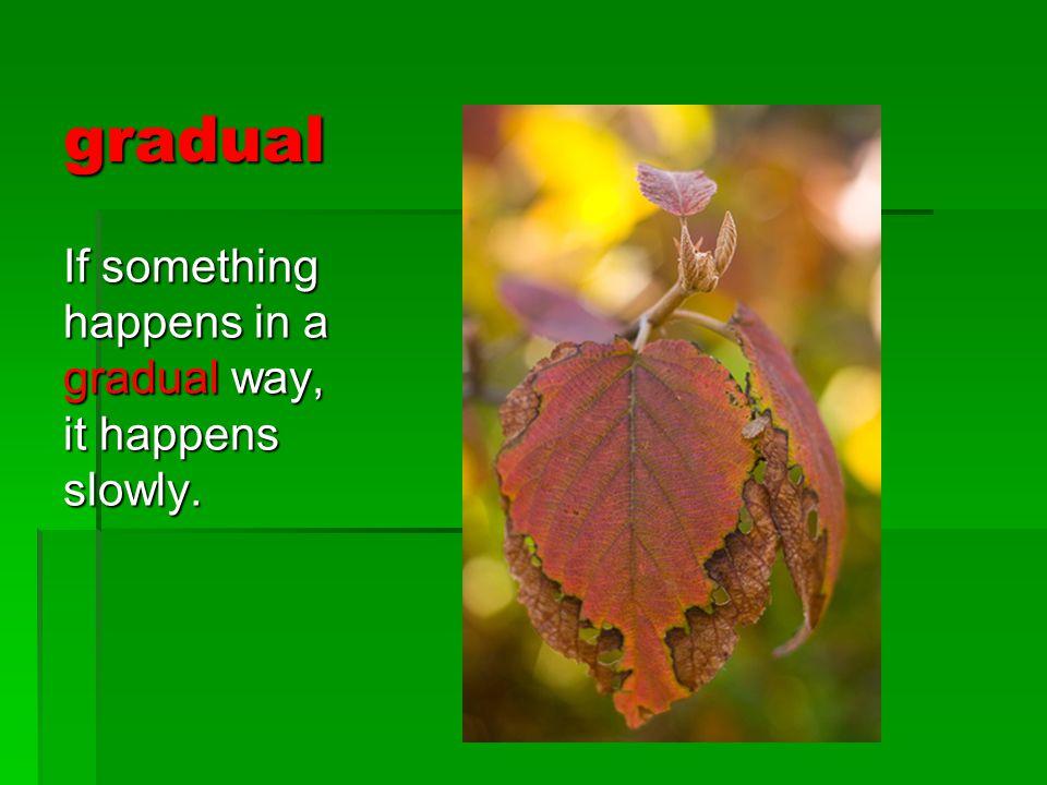 gradual If something happens in a gradual way, it happens slowly.