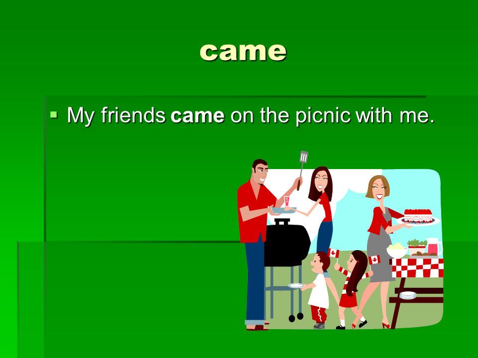 came  My friends came on the picnic with me.