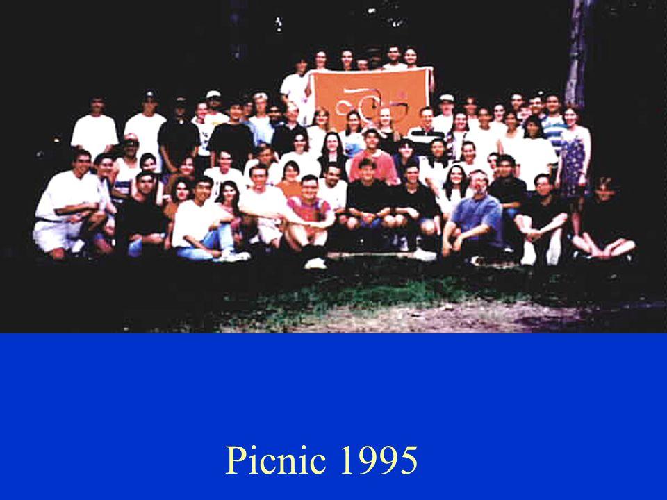 Picnic 1995