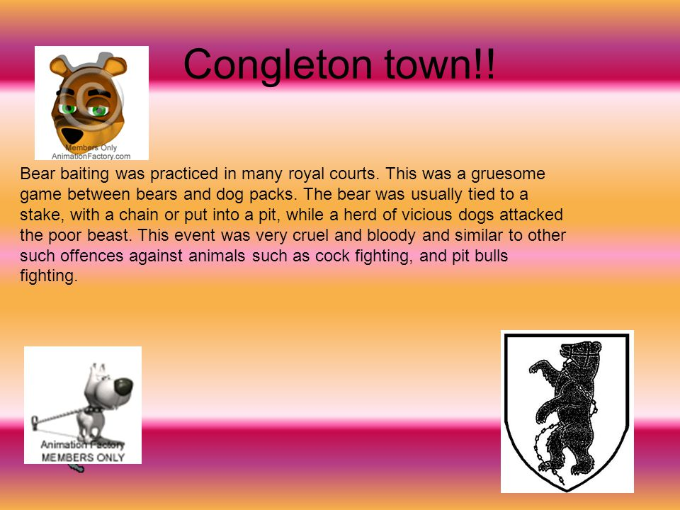 Congleton town!. Bear baiting was practiced in many royal courts.