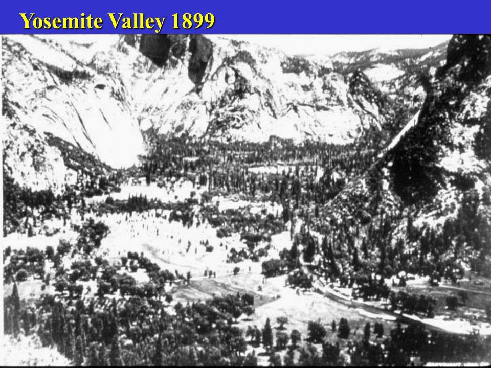 Yosemite Valley 1961