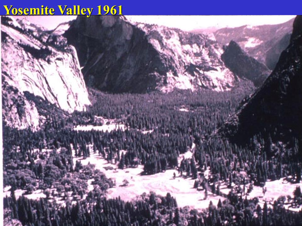 Yosemite Valley 1961