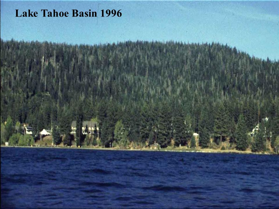 Lake Tahoe Basin 1996