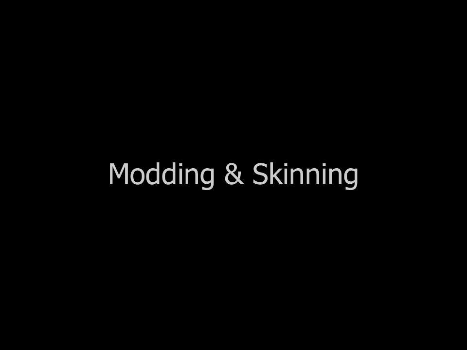 Modding & Skinning