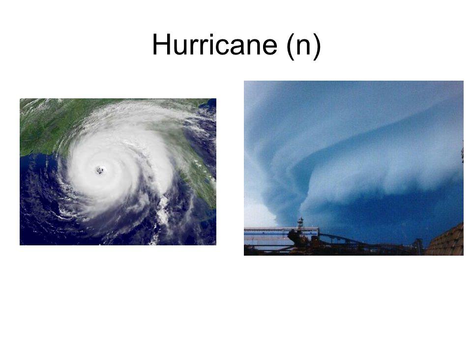 Hurricane (n)