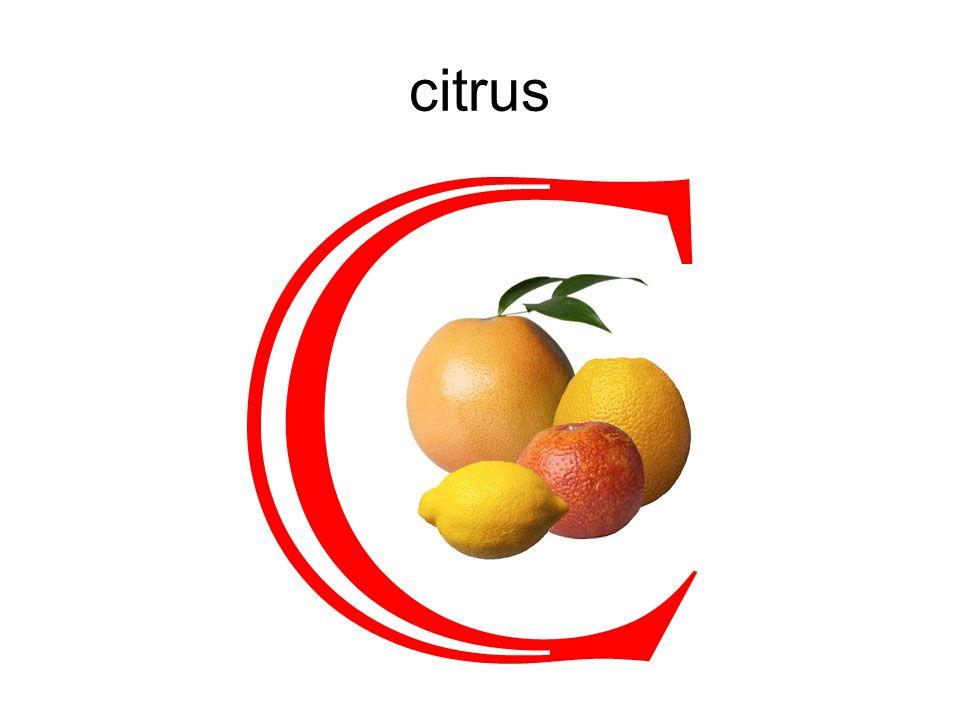 citrus C