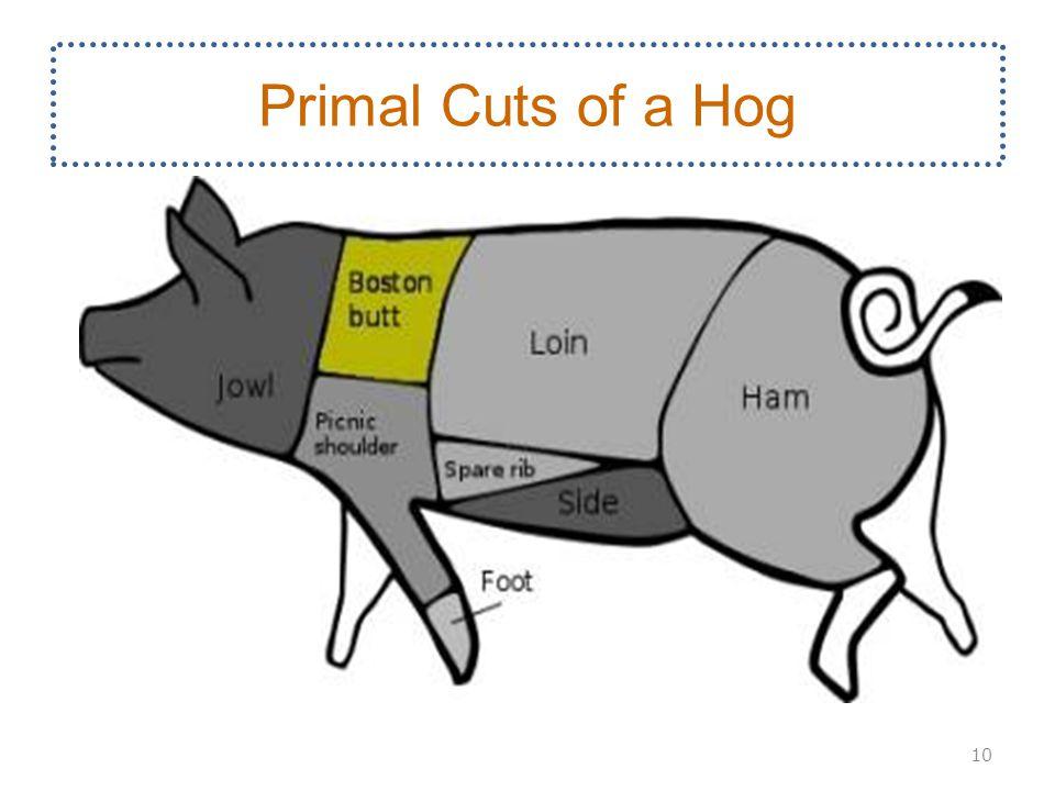 Primal Cuts of a Hog 10