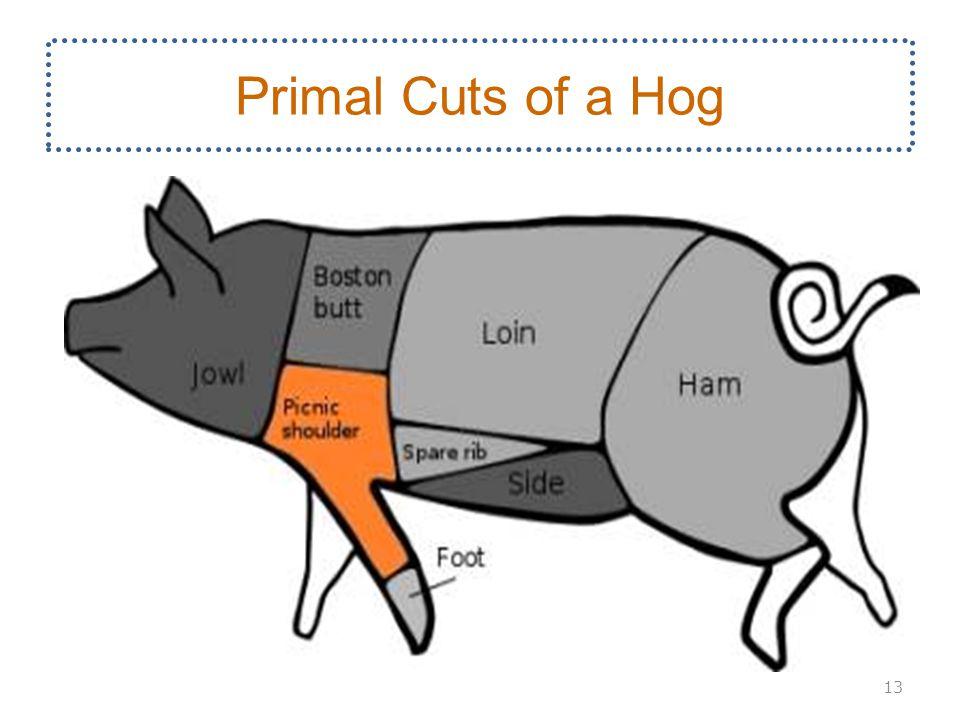Primal Cuts of a Hog 13