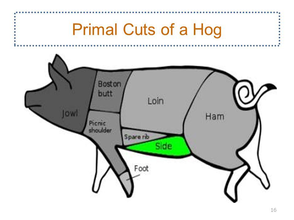 Primal Cuts of a Hog 16