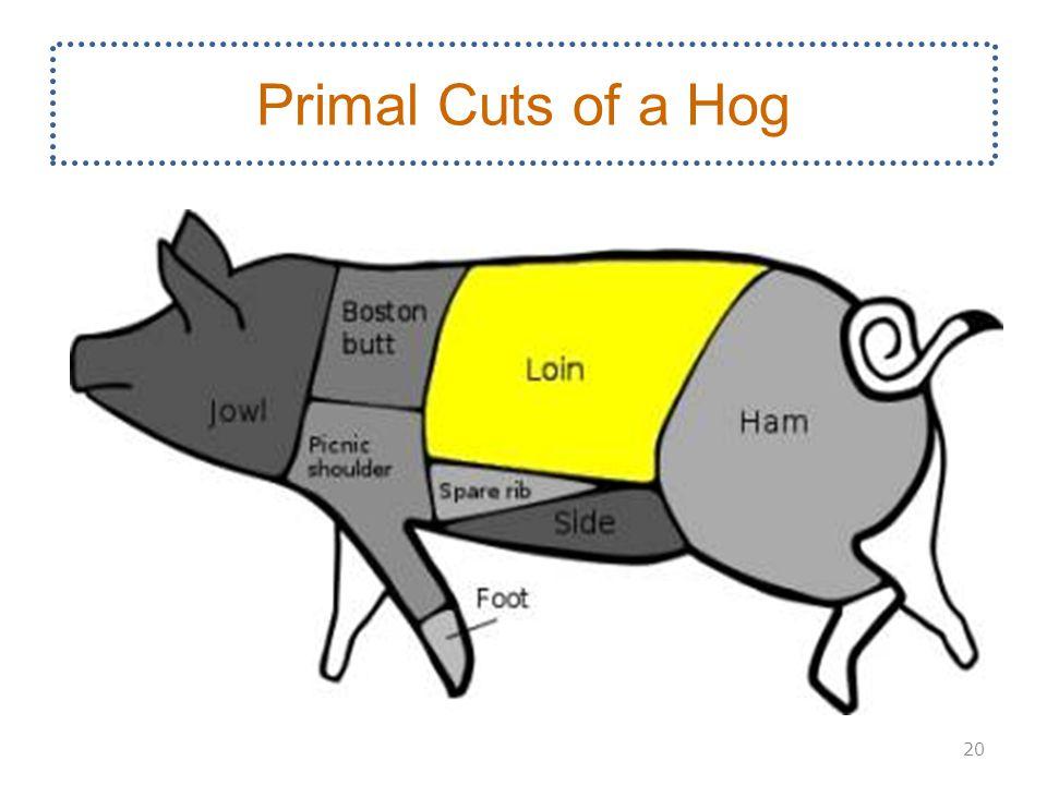 Primal Cuts of a Hog 20